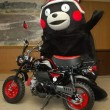 wildstyles_kumamon03